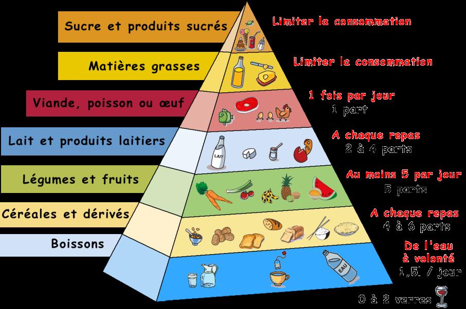 Une sociologie des normes diététiques est-elle possible ? - La Vie des idées